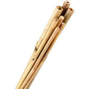 "Bamboo Stakes, 1/2"" x 4', Bundle of 250"