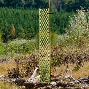 "4"" x 18"", Rigid Seedling Protector Tubes, pk. of 250"