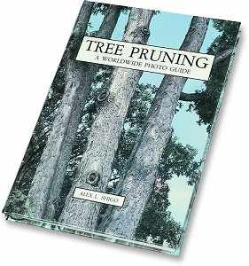 Tree Pruning: A Worldwide Photo Guide