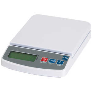 Pesola Multi-Purpose Bench Scale, 1,000g x 0.1g