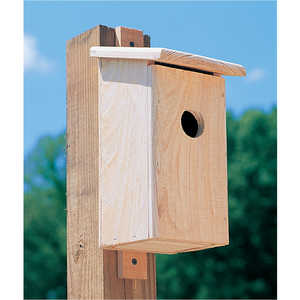 Cypress Blue Bird Nesting Box