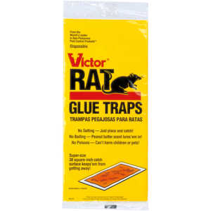 Victor Rat Glue Traps, Pack of Two