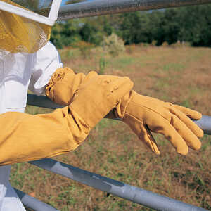 Canvas Beekeeping Gloves, Large