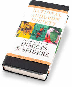 The National Audubon Society Field Guide, Insects and Spiders