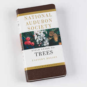 The National Audubon Society Field Guide, Eastern Trees
