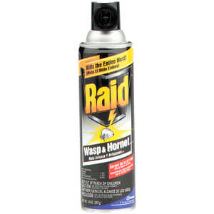 Raid Wasp and Hornet Killer, 14 oz. Aerosol Can