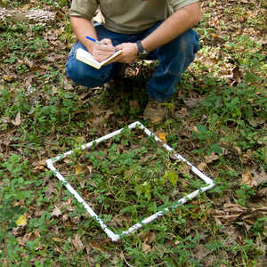 Collapsible Sampling Square, 0.25 Meter